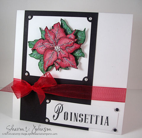 poinsettia-2-480-wm-notime.jpg