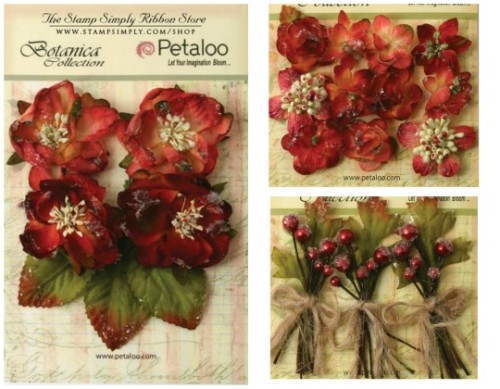 Petaloo Sugared Red 3 540420.jpg